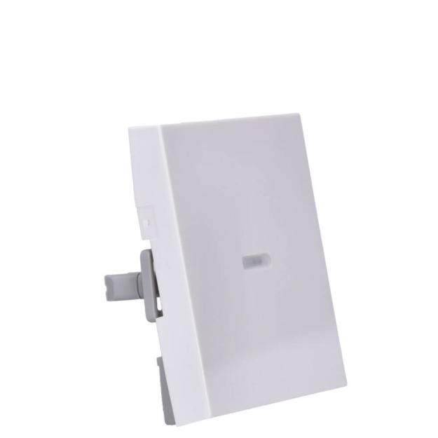 GIRA Wippe 091403 Tasts Kontroll System 55 rw