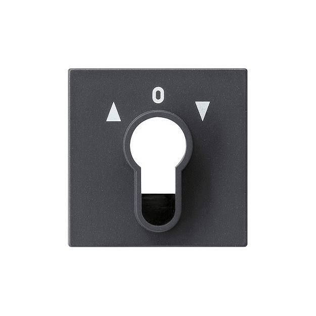 Gira 039628 Raumtemperaturregler anthrazit System 55 mit Wechsler
